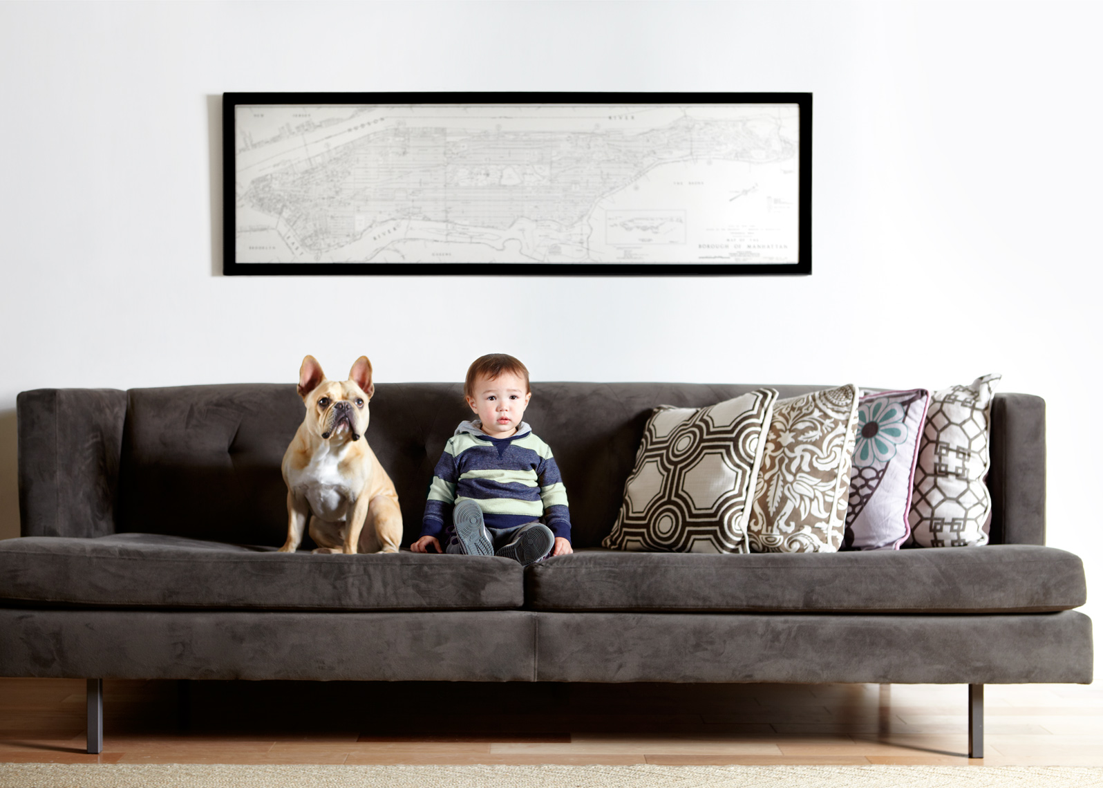 Boy and French bulldog on couch