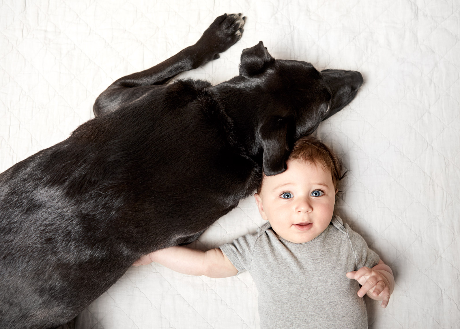 Baby with black lab