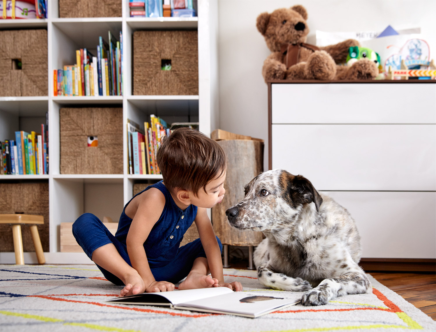 Boy reading to dog